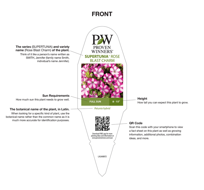 How to read a plant tag proven winners share to facebook share to twitter share to pinterest share to email share to print share to more ccuart Choice Image