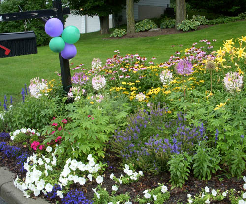 Create Your Own Mailbox Garden Proven Winners